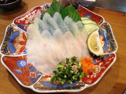 高級魚オコゼの刺身 肝もついています